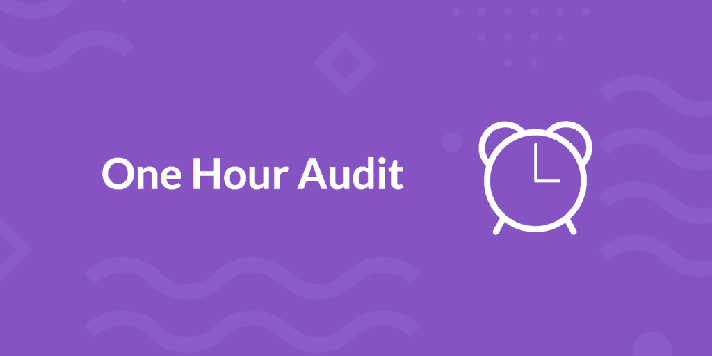 mintWP One Hour Audit